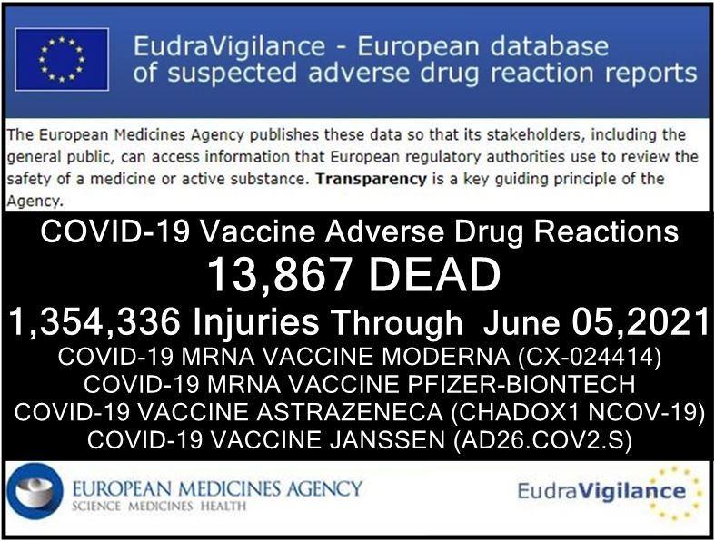 EudraVigilance-05062021-summary-adrreports.jpg