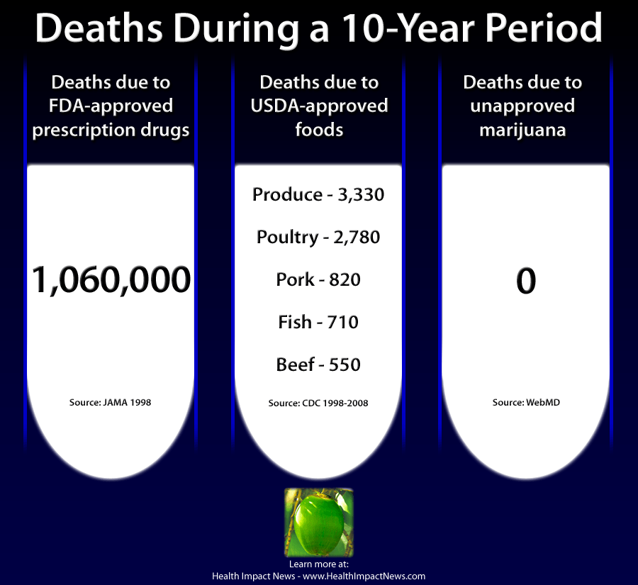 illegal-marijuana-deaths-compared