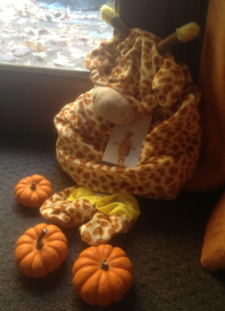 Micah Halloween costume shell
