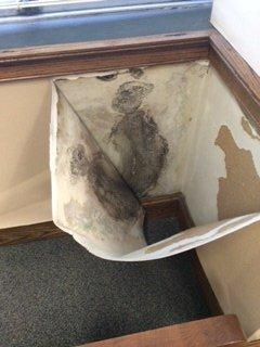 Headley mold peeled back wallpaper via foxcarolina